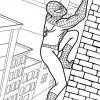 Desenhos para colorir Homem Aranha 12