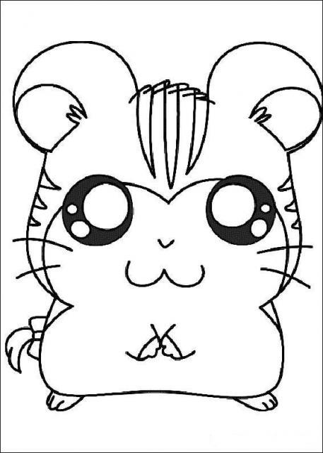 Desenho colorir Hamtaro 02