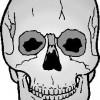 atividades corpo humano crânio 02