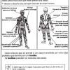 atividades corpo humano sistema muscular