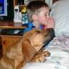 Crianças e animais 17