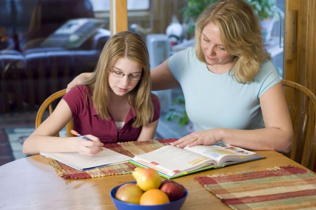 Projeto de Lei: Educação Básica poderá ser feita em casa