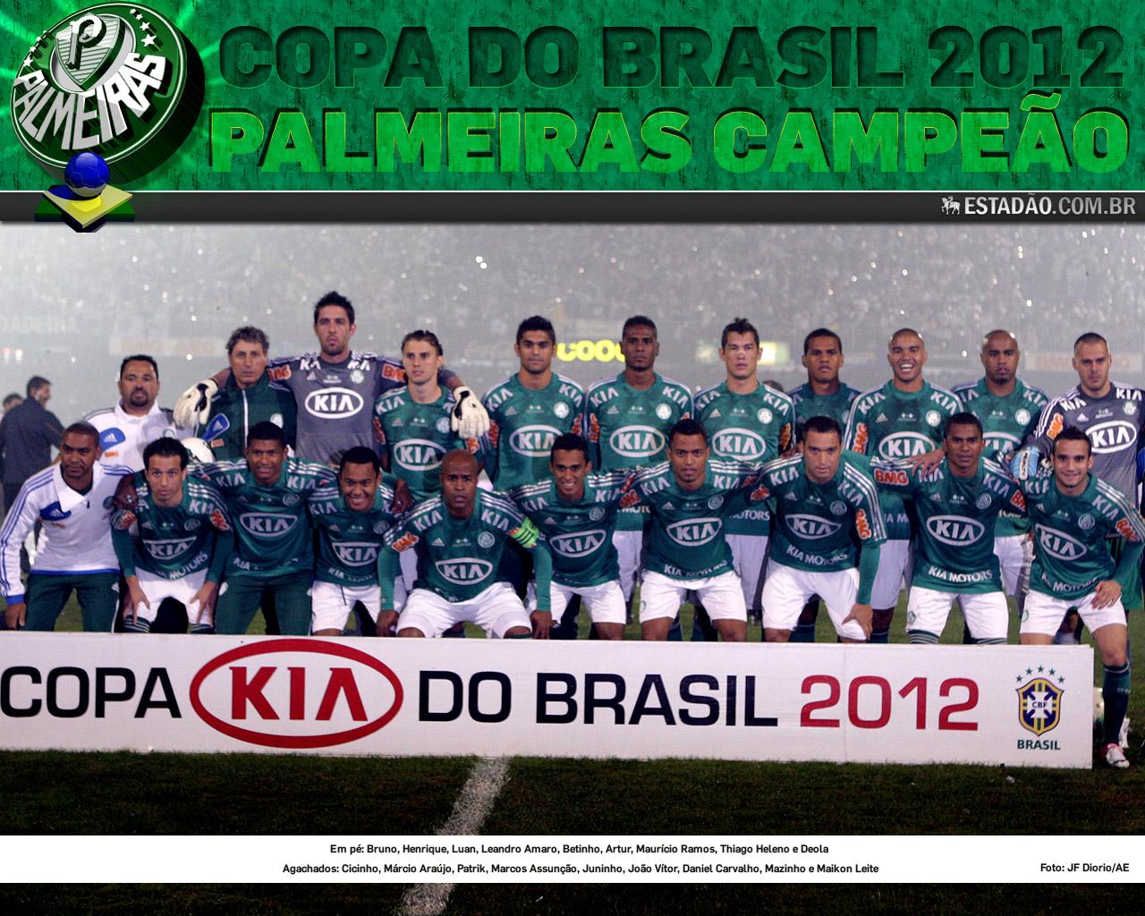 Wallpaper: Palmeiras Campeão da Copa do Brasil 2012 - 02