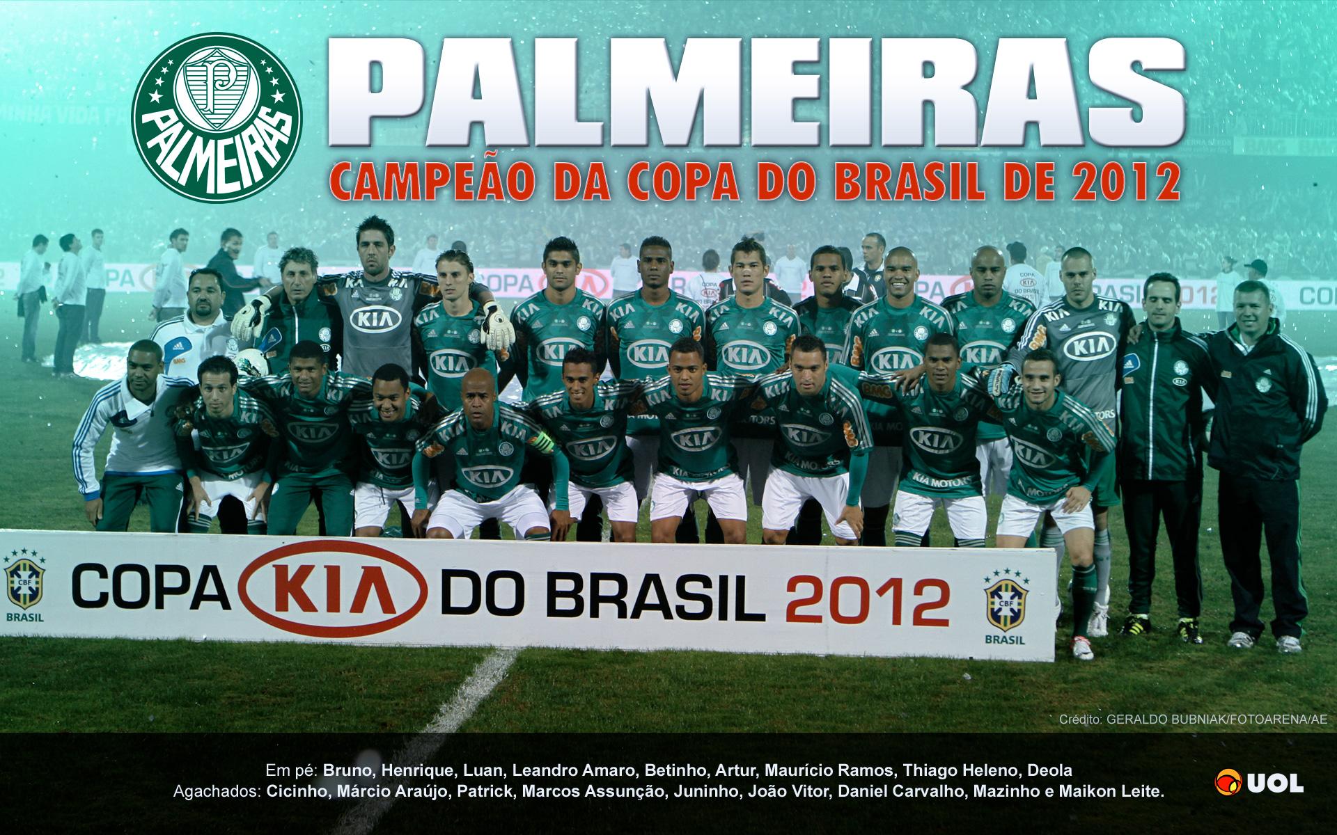 Wallpaper: Palmeiras Campeão da Copa do Brasil 2012 - 05